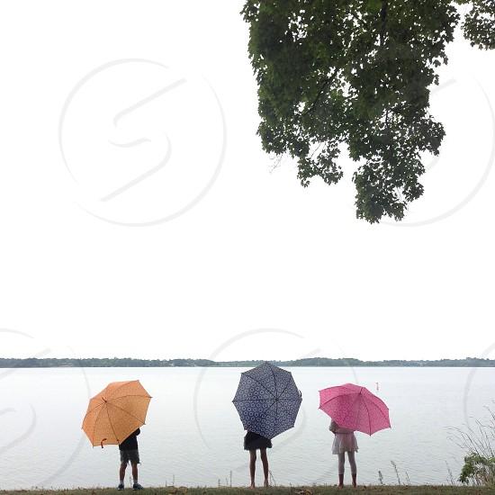 multicolored umbrellas next to a lake photo