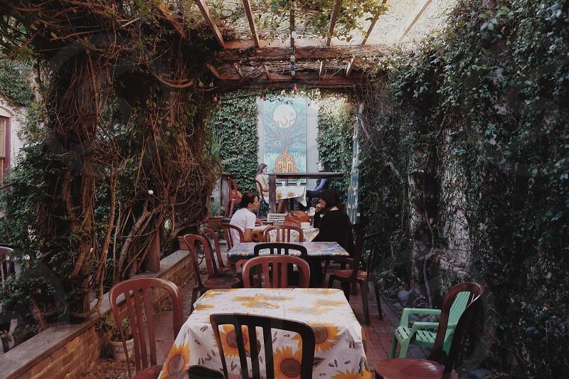 linnaea's café san luis obispo photo