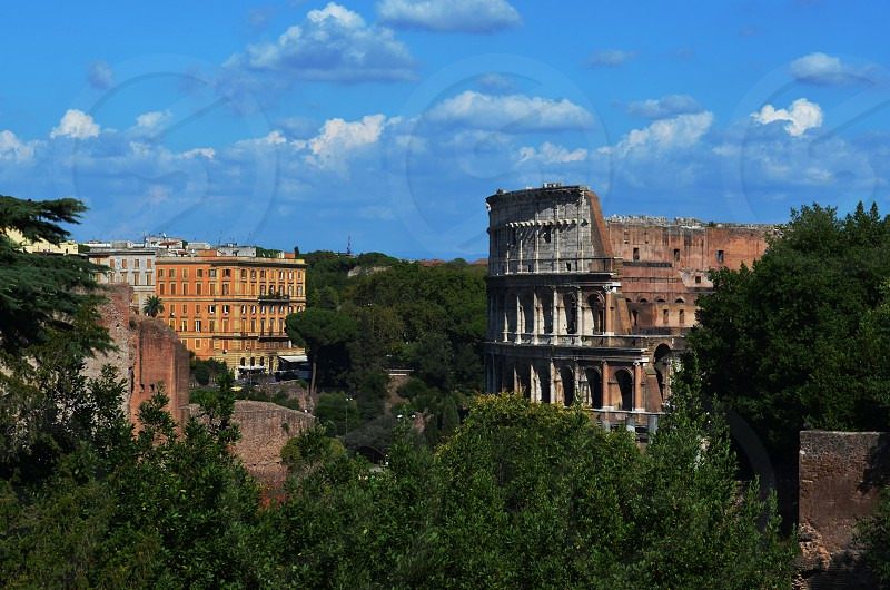 the colesium from palatine hill. photo