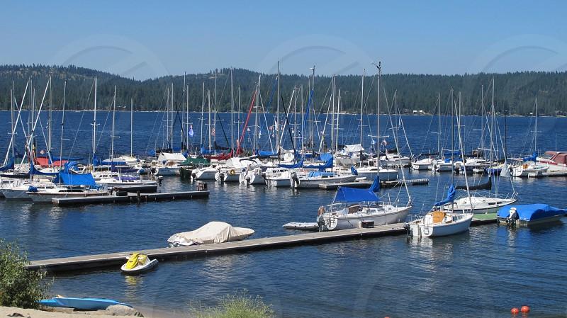 Busy boat marina docks sailboats motor boats masts sails lake water trees shoreline blue white photo