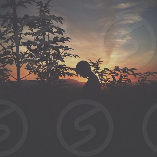 silhouette of person in field at sunset photo
