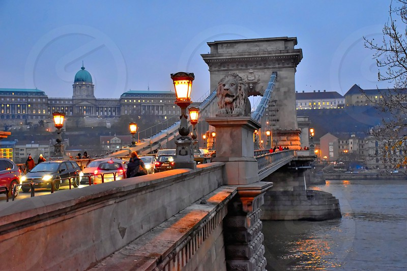Chainbridge and the Royal Palace in evening light Budapest. photo