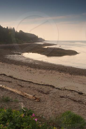 Sand. Beach. Ocean. Sunrise. Coast. Vertical. photo