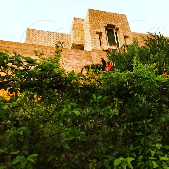 Ennis Building Frank Lloyd Wright Los Angeles photo