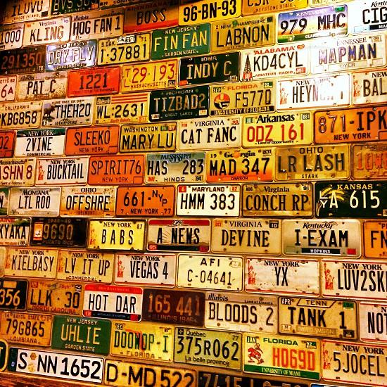 License plates on key west bar wall photo