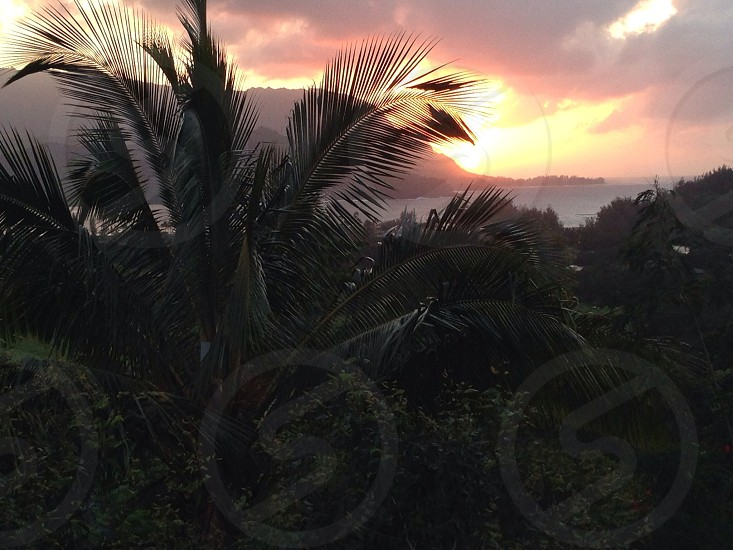 #hawaiisunsets photo