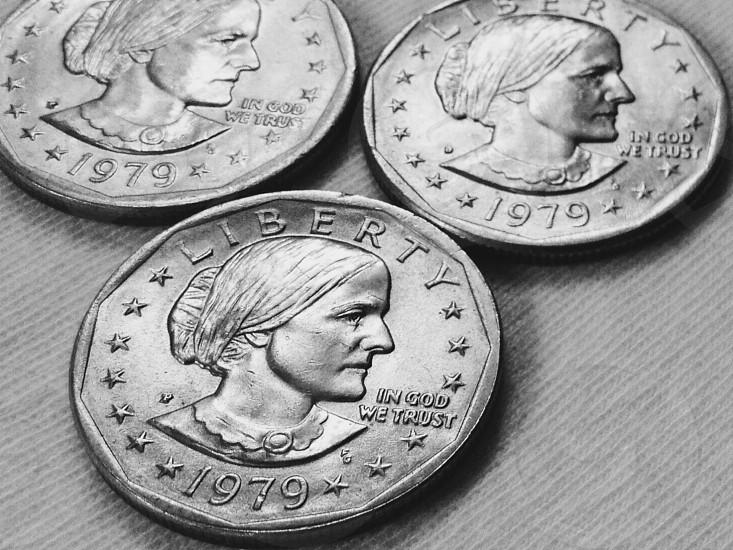 Silver Dollar photo