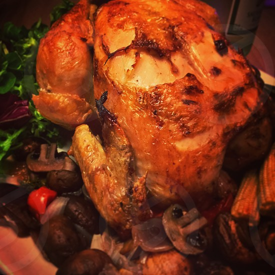 christmas turkeys photo