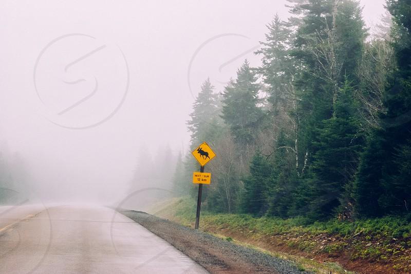 Moose crossing sign; Nova Scotia Canada photo