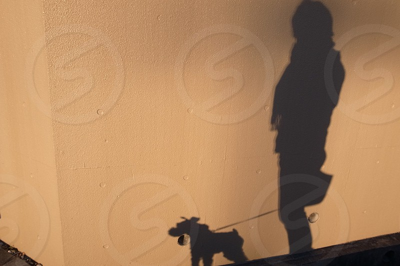 dog and person shadow photo