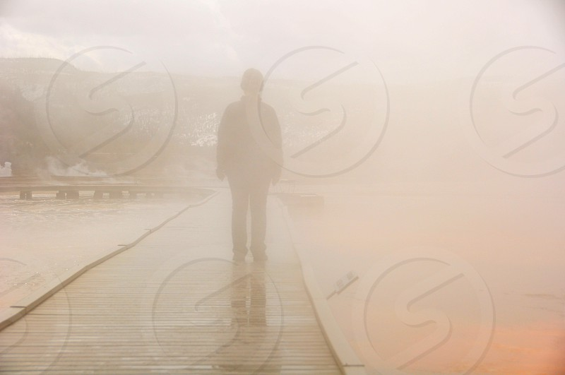 Lost in the fog in Yellowstone National Park photo