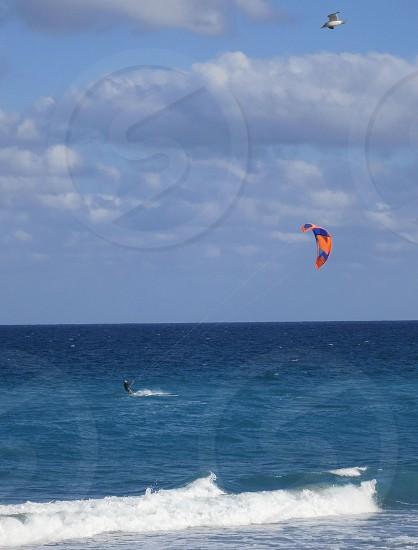 Kitesurfer ocean surf gull photo