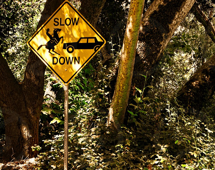 Yellow warning sign in the forest of a car scaring a horse and rider  photo