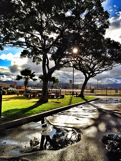 After the storm in Honolulu HI photo