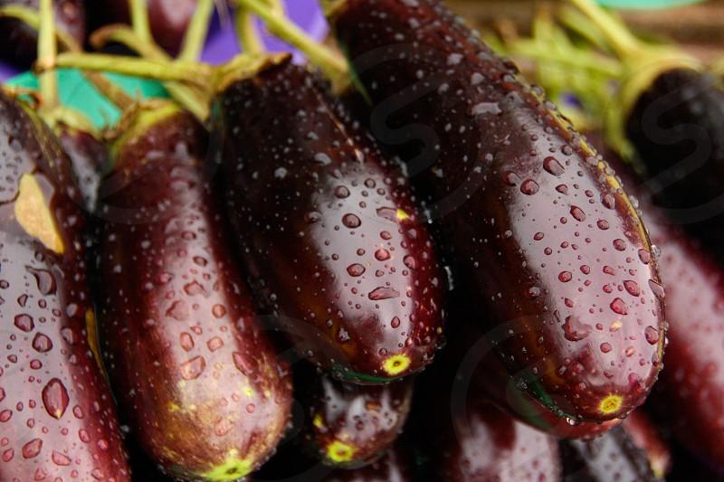 eggplant fruit close up fresh market photo