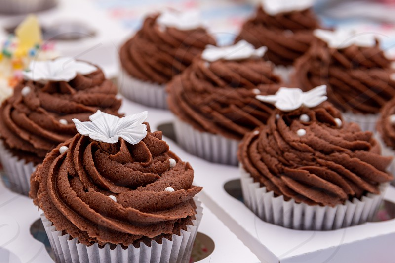 cake cupcakes chocolate gourmet fancy decorated topping buttercram birthday celebration swirl close up delicious photo
