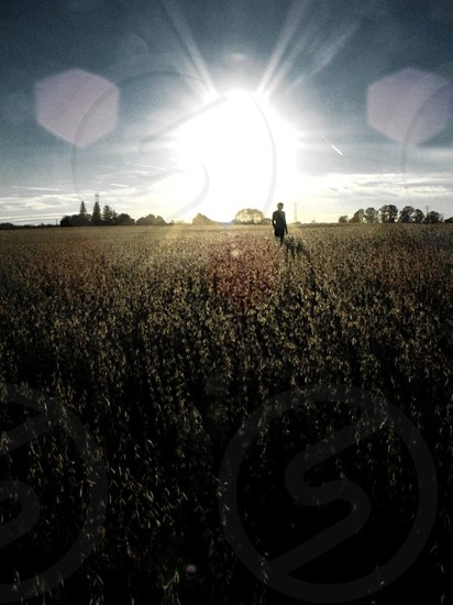 person standing in field under blue sky photo