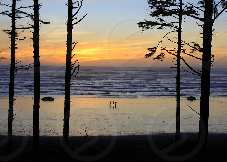 Ruby Beach Forks WA photo