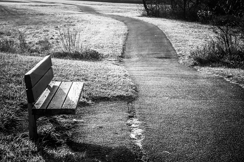 brown bench chair photo