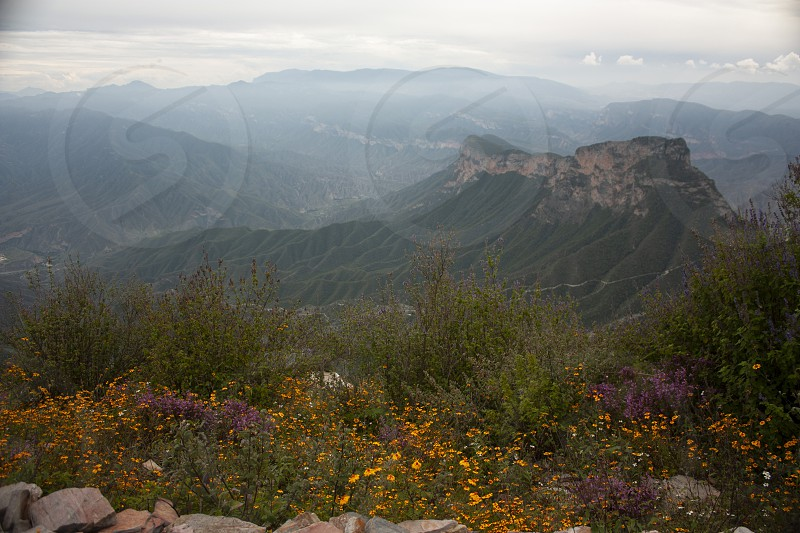 Haze over the mountains of four sticks Sierra Gorda Mexico among yellow flowers clouds photo