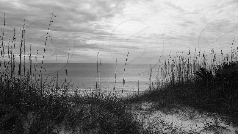 B&W Beach. Rosemary Beach Florida 2013. photo