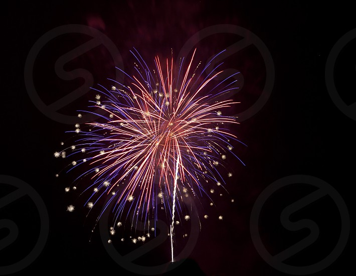 Coral firework celebration photo