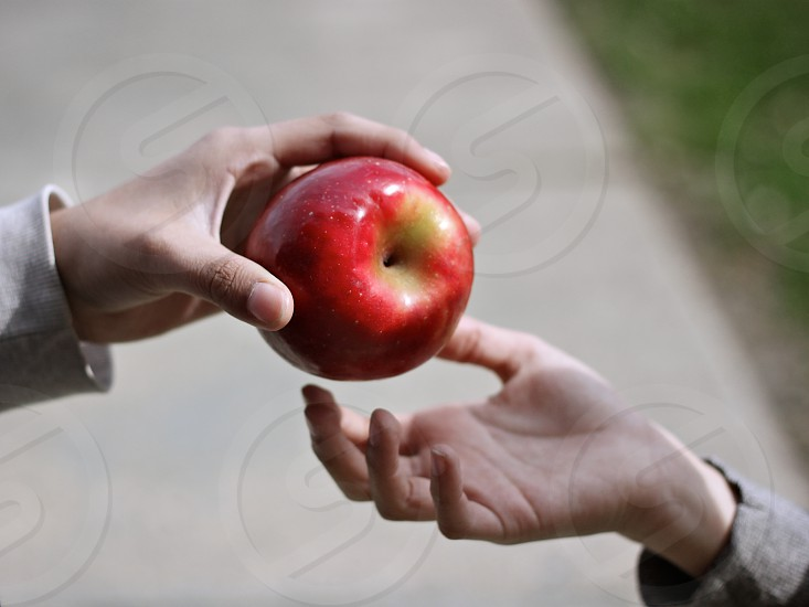 hands apple give photo