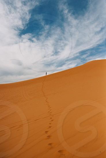 Coral Pink Sand Dunes Utah photo