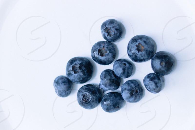 blueberry fruit photo