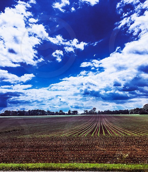 Farm; Indiana; Midwest; clouds; nature; landscape photo