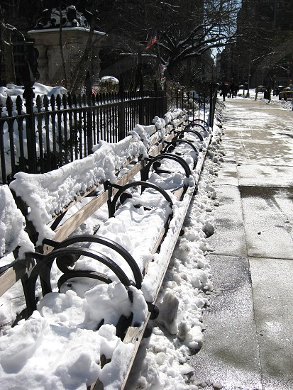 benches full of snow photo