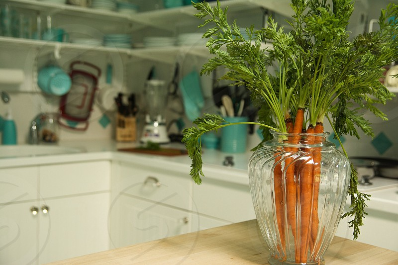 Lovely carrots in a vase photo