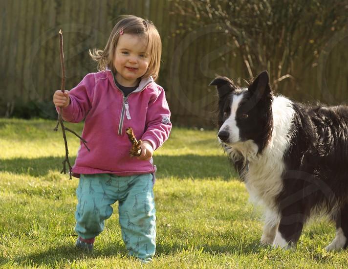 Baby garden summer dog collie toddler child fun photo