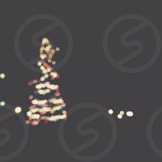 christmas trere photo