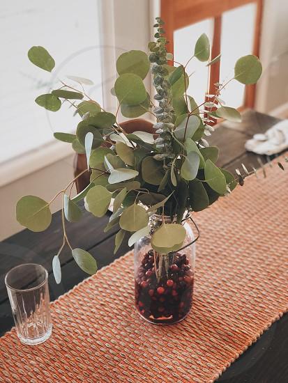 Thanksgiving eucalyptus centerpiece cranberries farm table diy  photo