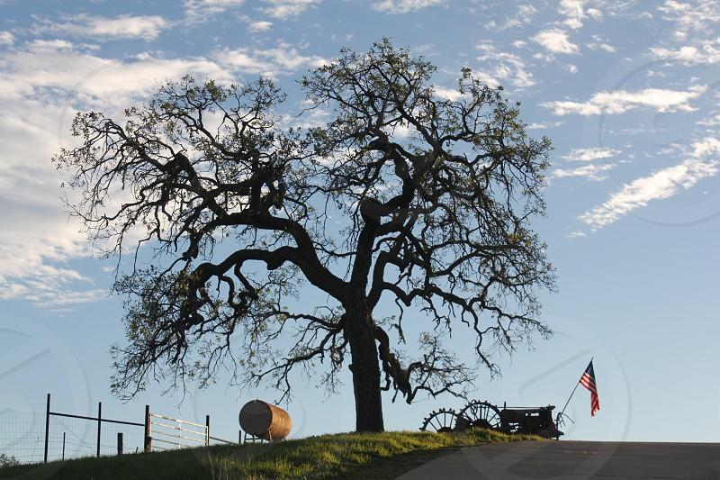 American flag tractor tree clouds storage tank farm photo