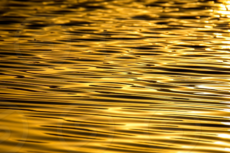 Gold water surface ripples waves repeating pattern slick calm glassy photo