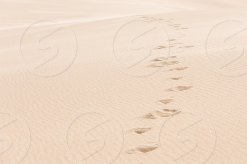Footprints disappearing into the sand dunes photo