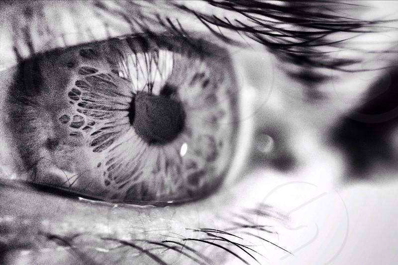 Macro olloclip iPhone 5s eye closeup  photo