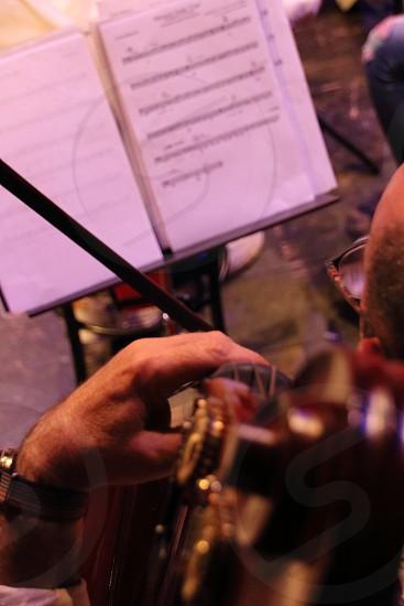 Double bass master photo