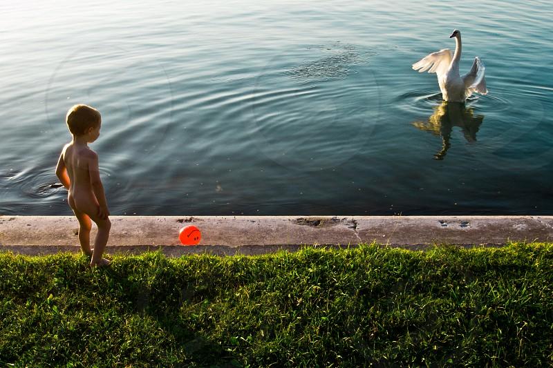child lake shore swan kitsch wave ball summer sunset green blue orange photo