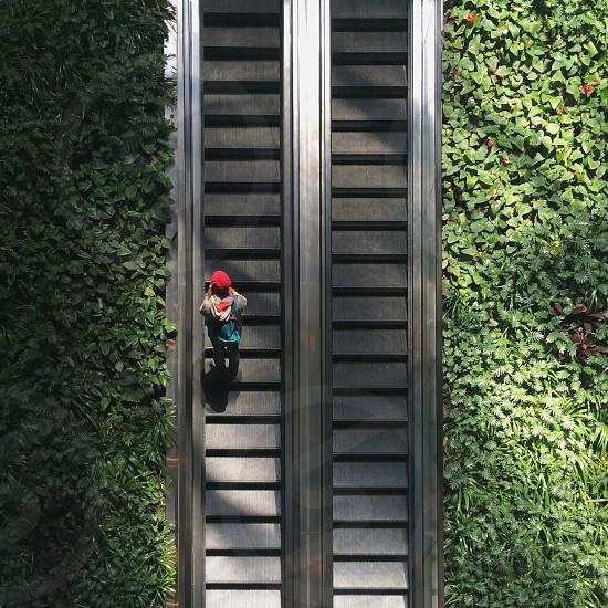 When nature meets architecture. photo