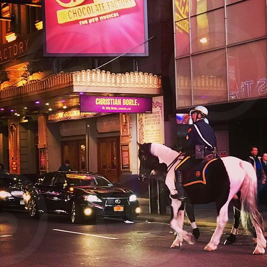 New York City police horsebroadway street scene  photo