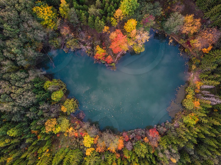 Pond in forest surrounded by trees. Autumn colors photo