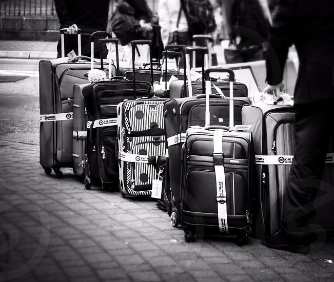 grey and black luggage photo