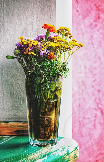 Wild flowers in a glass photo