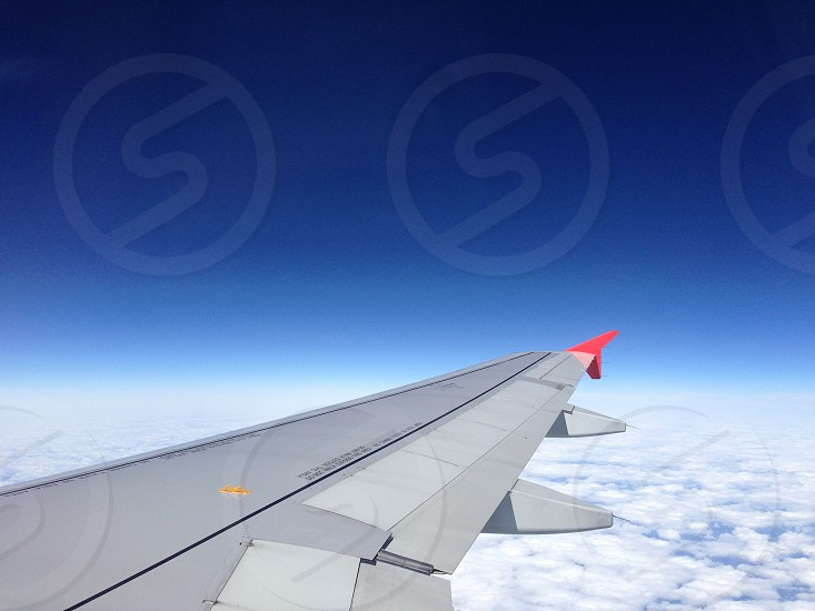 Wing photo