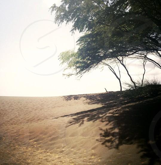 black beach nature landscape photo