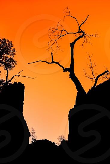 Zion Canyon Sunset photo