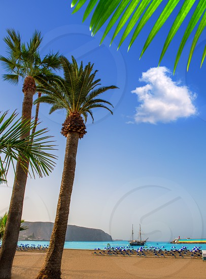 Los Cristianos beach in Arona Tenerife south at Canary Islands photo